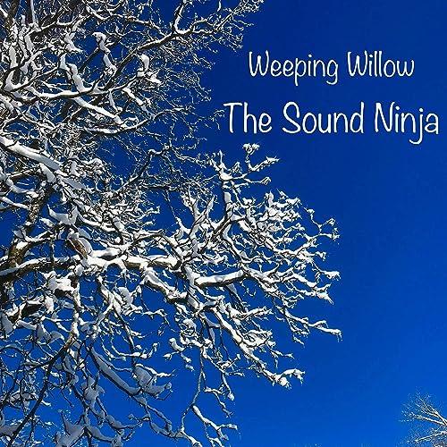 Weeping Willow de The Sound Ninja en Amazon Music - Amazon.es