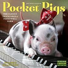 Pocket Pigs Mini Wall Calendar 2017: The Famous Teacup Pigs of Pennywell Farm