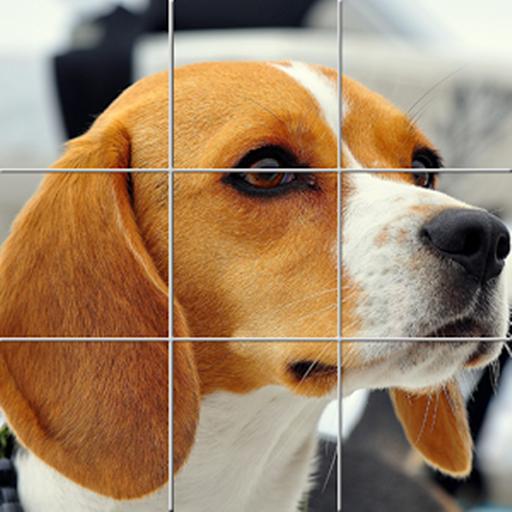 Puzzle games: Pets Puzzle