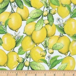 Robert Kaufman Down on the Farm Lemons Lemon Quilt Fabric, By The Yard (0676096)