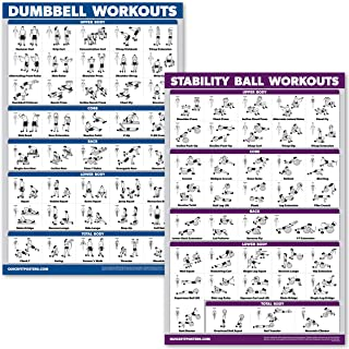 QuickFit Dumbbell Workouts and Exercise Ball Poster Set - Laminated 2 Chart Set - Dumbbell Exercise Routine & Stability/Yoga Ball Workouts