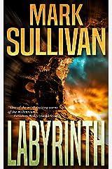 Labyrinth Kindle Edition