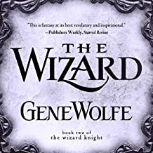 The Wizard: The Wizard Knight Series, Book Two