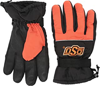 Forever Collectibles NCAA Collegiate Team Color High End Insulated Winter Gloves - Pick Team