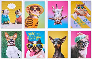 American Greetings All Occasion Blank Cards, Animals (48-Count)