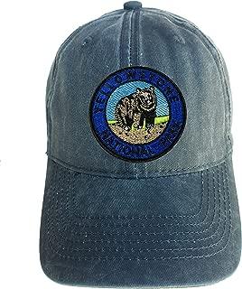 Yellowstone Park Blue Adjustable Curved Bill Strap Back Dad Hat Baseball Cap Souvenir National Parks Logo Series