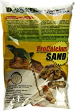 sand for turtle tank