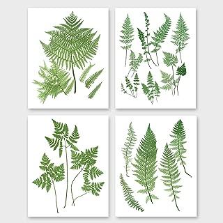 Fern Wall Art (Botanical Prints, Set of 4, Woodland Home Decor) – 5x7 Unframed
