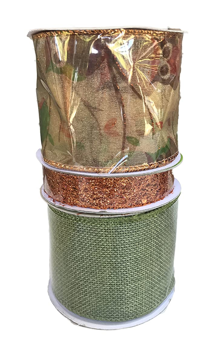 Sheer Ribbon with Owls Orange Glitter Mesh and Green Burlap Bundle of Three Fall Themed Ribbons