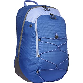 AmazonBasics Casual Sports Backpack
