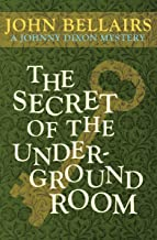 Best the secret of the underground room Reviews