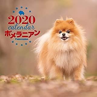 2020年 大判カレンダー ポメラニアン