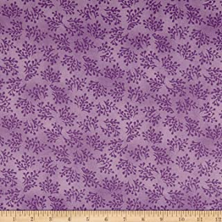 maywood studio aubergine