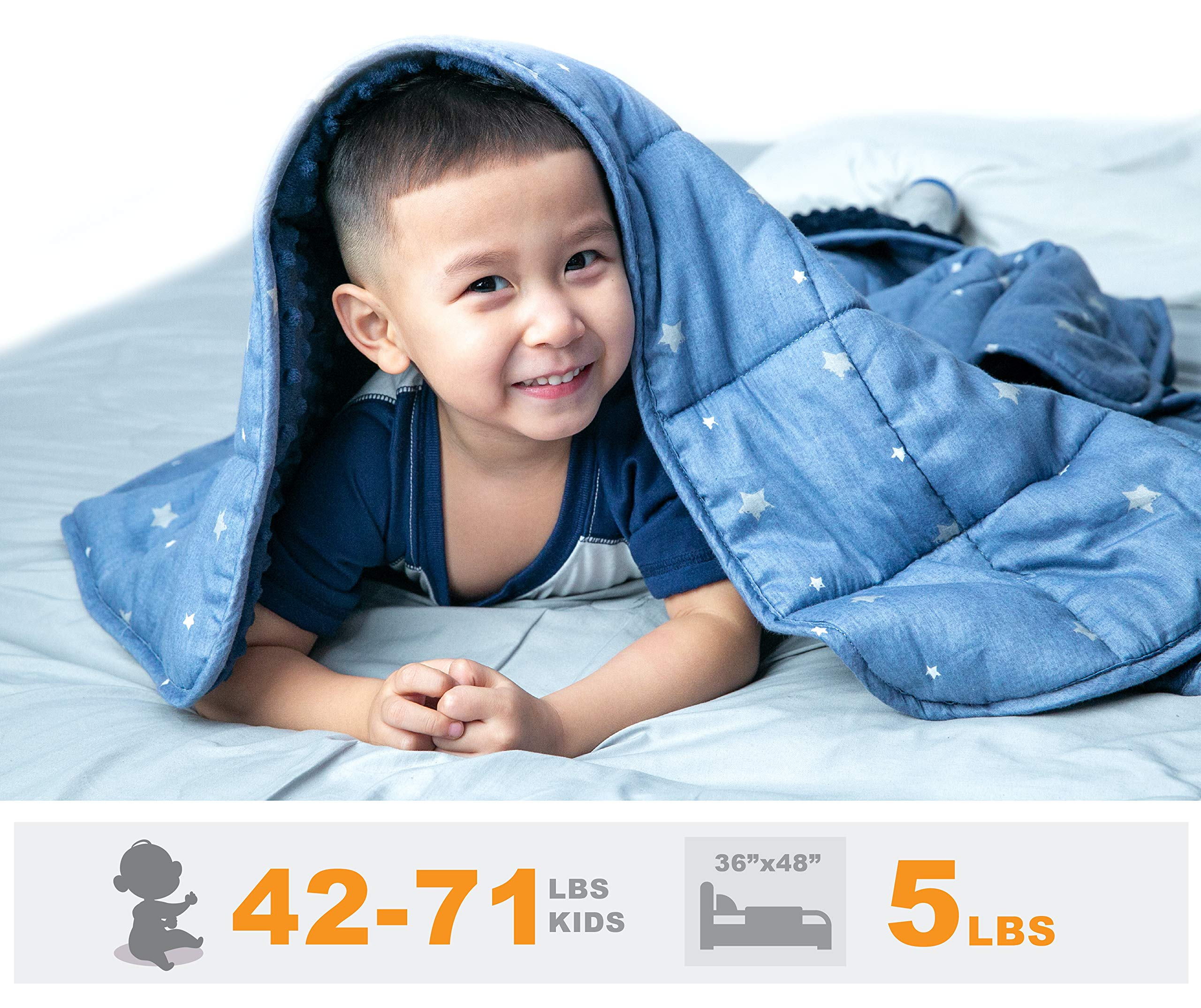 Portable Pillow Throw Two Sided Premium Breathable Cotton And Warm Minky Fabric With Glass Beads| Adult Lap Blanket Kids Weighted Travel Blanket| Children Between 40-70 lbs 36x48 I 5 LBS Heavy