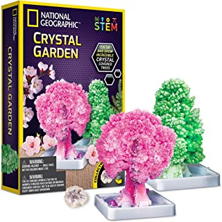 National Geographic Crystal Garden Kit (JM02688)