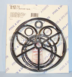 Aladdin Pac Fab Multiport Valve 2 Gasket & O-Ring Kit Go-Kit 70 with Small Package of Magic Lube