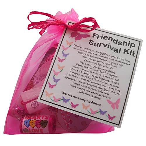 SMILE GIFTS UK Friendship Gift Survival Kit Great Friend For Birthday Or Christmas