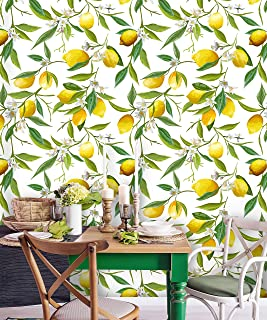 Removable Wallpaper | Peel and Stick Floral Wallpaper Pattern | Tropical Wallpaper | Lemon Wallpaper (Sample 6