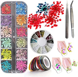 3D Nail Art Accessories Kits 12 colors Natural Real Dry Flower, Nails Rhinestone Pearl Metal Studs Wheel, Multicolor Striping Tape Line, Nail Stickers Decal Decoration Set with Tweezers (SET19A)