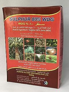 SULFER® 80% معتمد من WDG MOCCAE | رقم 1 اختيار البستاني صنع في الهند | 1 كجم (80% مفد فطري مشذب بقلنسوة