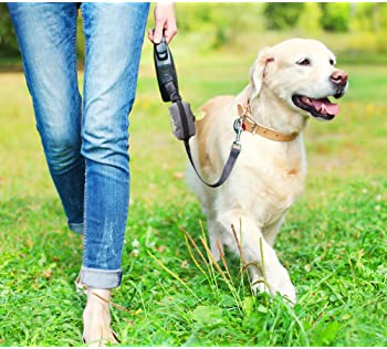 Explore doggy bag holders for leash | Amazon.com
