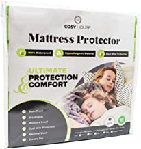 Queen Size Luxury Bamboo Hypoallergenic Waterproof Mattress Protector - Breathable Noiseless Fitted Bed Cover Stays Cool - Protection Against Stains, Fluids, Dust Mites, Allergens, Bacteria