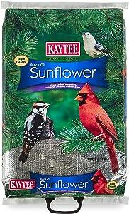 Kaytee Wild Bird Black Oil Sunflower Food, 20 Pounds