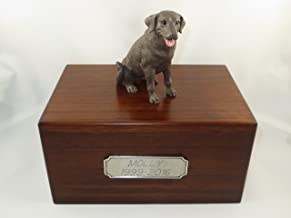 Beautiful Paulownia Medium Wooden Urn with Chocolate Labrador Lab Figurine & Pewter Personalized Engraving