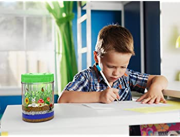 Light-up Terrarium Kit for Kids with LED Light on Lid - Create Your Own Customized Mini Garden in a Jar That Glows at...