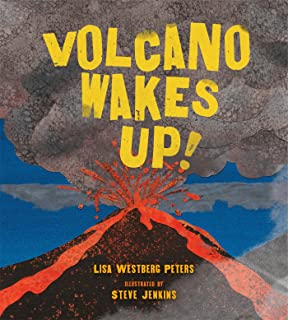 Best volcano wakes up Reviews