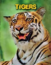 Tigers (Living in the Wild: Big Cats)