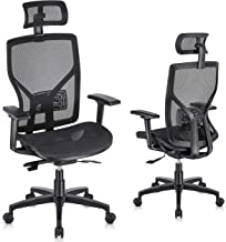 SUNNOW Ergonomic Office Chair Computer Mesh Chair with Adjustable Lumbar Support, Sliding Seat, Headrest, 3D Armrest-High ...