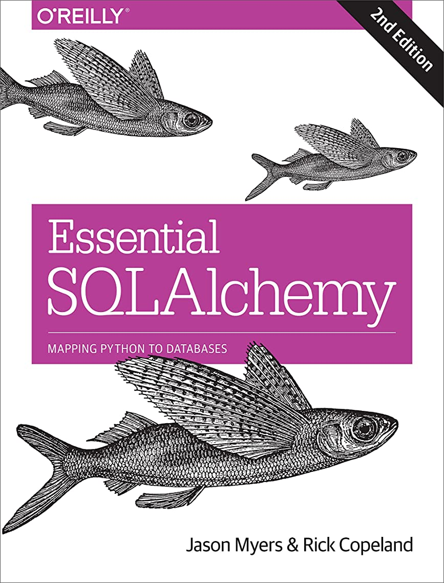 半径見捨てる好奇心盛Essential SQLAlchemy: Mapping Python to Databases (English Edition)