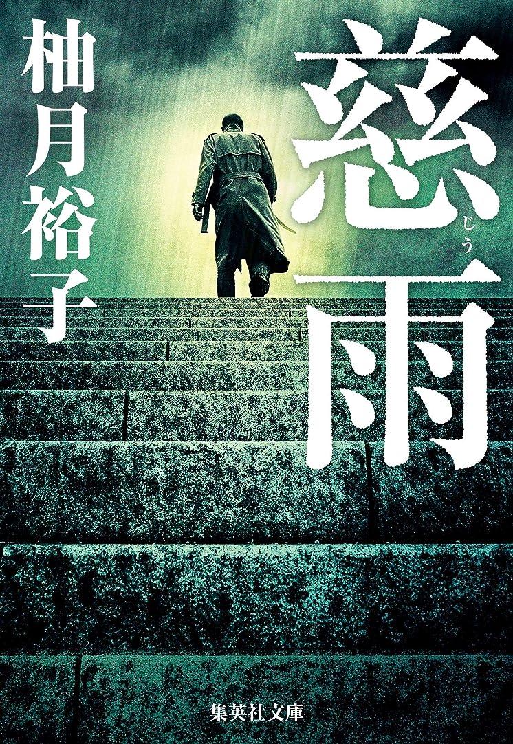 リットル頭痛範囲慈雨 (集英社文庫)