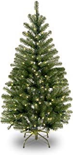National Tree 4 Foot Aspen Spruce Tree with 100 Clear Lights (AP7-300-40)