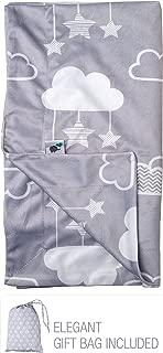 Minky Baby Blanket 30