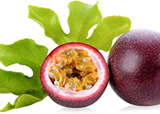 Purple Possum Passion Fruit Passiflora Edulis Live Plant