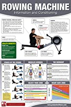 Productive Fitness Products Rowing Machine Poster/Chart: Male Version - How to use a Rower - Full Body Workout Laminated - 24x36 inches