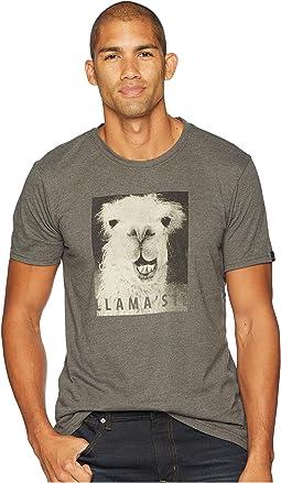 Llamaste Journeyman