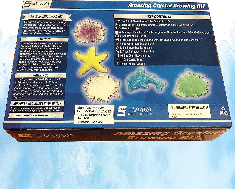 Evviva Sciences Crystal Growing Kit for Kids Science to Make & Grow...