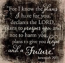a plan to prosper you
