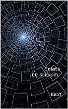 Éclats de silicium