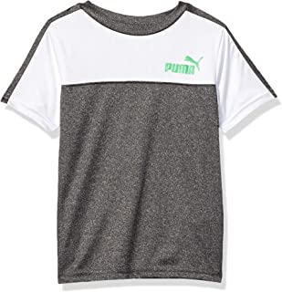 PUMA Boys 71191731FME-P011 Boys' Graphic Tee Short Sleeve T-Shirt - Gray