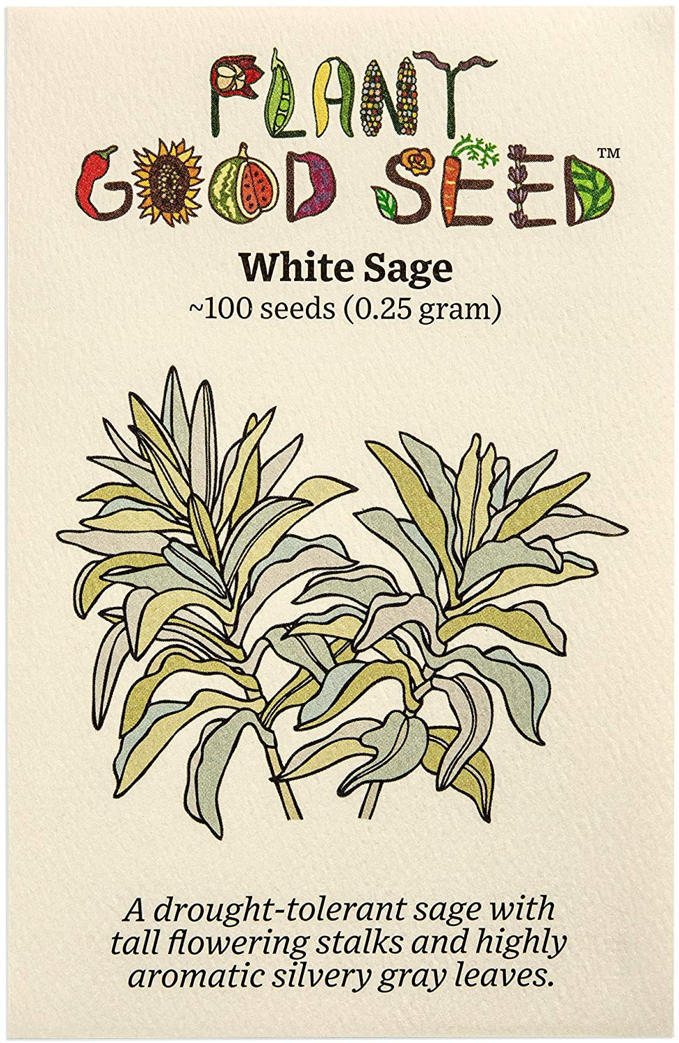 White At the price of surprise Sage Salvia apiana Seeds : New sales Heirloom Open Non-GMO ~100
