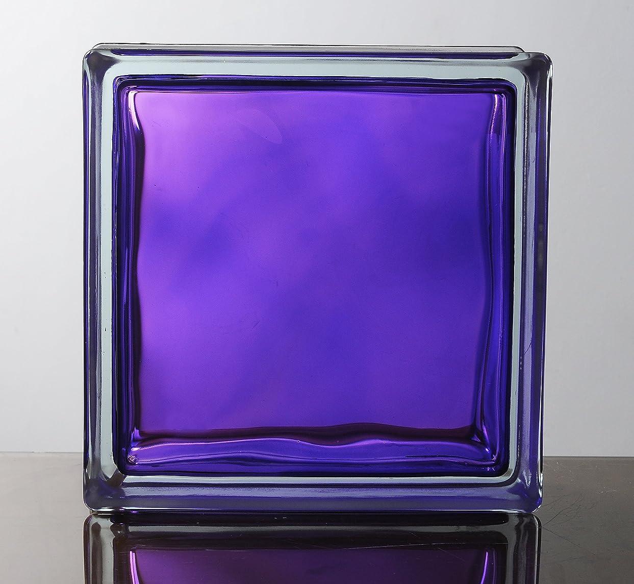 貨物構想する経営者ガラスブロック ◆◆◆デザイン豊富20種類◆◆◆(カラーシリーズ) 190mm角×80mm厚 (6個セット(1ケース), In Colored Purple)