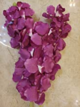 Samriddhi Long Stick Pink Artificial Flower for ugambilia Flowers Hanging Beautiful Stick for Home Decor