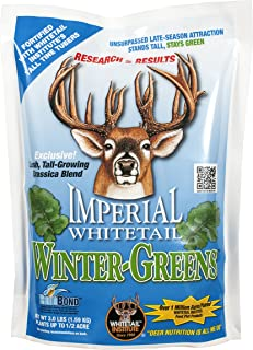 Whitetail Institute Imperial Winter-Greens Food Plot Seed (Fall Planting)