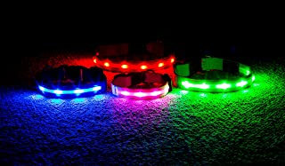 Wagz4Life Blow Out Sale Safety LED Dog Collar - Rechargeable - Water Resistant - Light Up or Flashing High Visibility - Looks Awesome - USB Charger - Blue Red Green Pink
