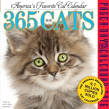 Best quote a day calendar 2016 Reviews