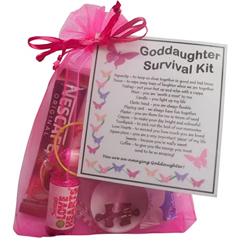 SMILE GIFTS UK Goddaughter Survival Kit Gift Great Present For Birthday Christmas Etc